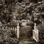 Garden Gate -  © John Neel