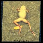 Dead Frog - © John Neel