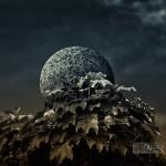 Orb - © John Neel