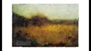 Landscape - Pinhole - © John Neel
