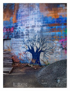 Tree - © John Neel