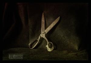 Shears - © John Neel