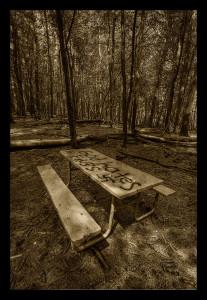 Picnic Table - © John Neel