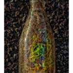 Bottle – © John Neel