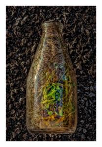 Bottle – © John Neel